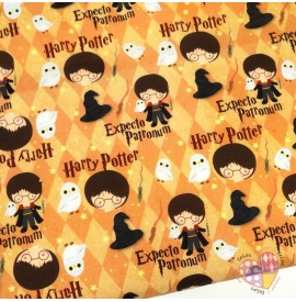 Popelin Caricatura Harry Potter